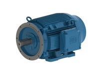 WEG 01836ET3Y160LFF-W22 18.5kW 3600 3 60//50 460 IEC-CI