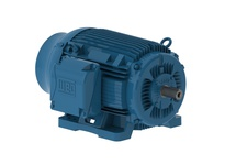 WEG 10018ET3E405T-W22 100HP 1800 3 60 208-230/460V TEFC-NEMA Pr