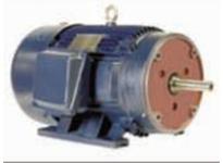 NAE NA284JM-25-2 HP: 25 FRAME: 284JM RPM: 3600