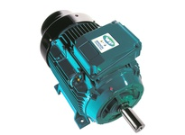 Brook Crompton 287E113WC-00 20HP 3000RPM 380-415/440-480V Cast Iron IEC W-DF160M Foot