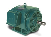 170155.60 125Hp 1785Rpm 405T Dp 208-230/46 0V 3Ph 60Hz Cont 40C 1.15Sf Rigid C 405T17Db6B Wattsaver Not