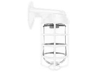 RAB VBR100DGW VAPORPROOF 100 WALL BRACKET WHITE W/ GL GLOBE CAST GUARD